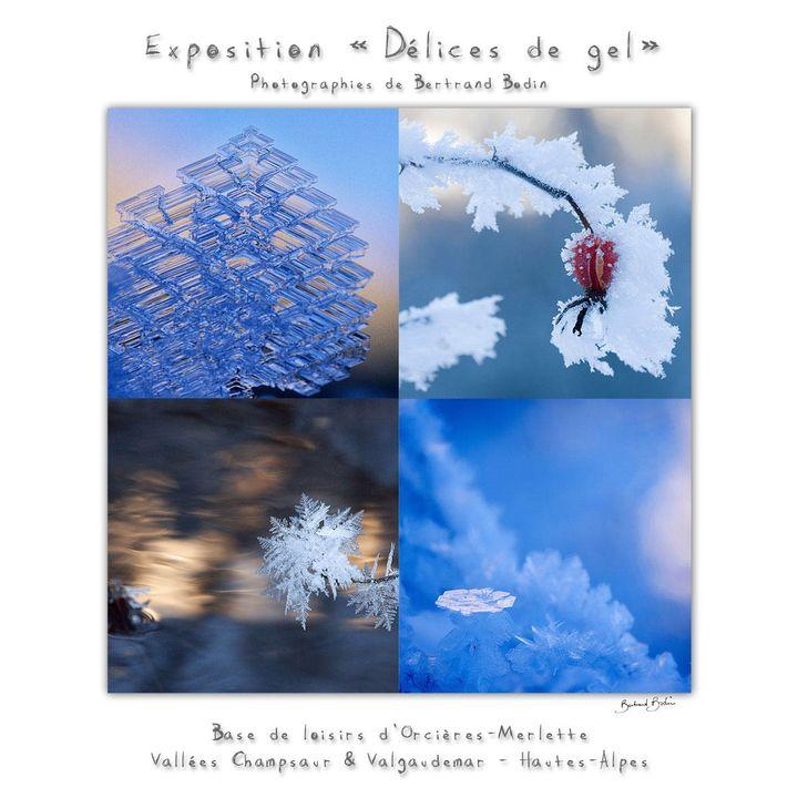 """Affiche de l'exposition """"Délices de gel"""" (BERTRAND BODIN)"""