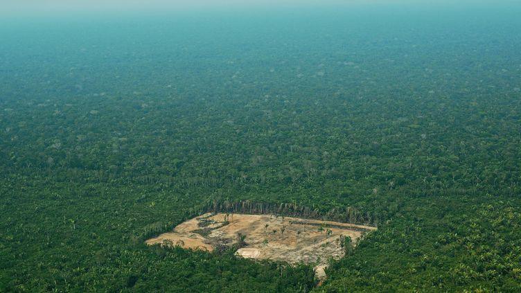 Une zone déforestée de l'Amazonie brésilienne, le 22 septembre 2017. (CARL DE SOUZA / AFP)