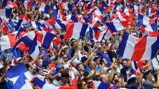Des supporters de l'équipe de France, le 26 juin 2016, au Parc OL, à Lyon (Rhône). (FRANCK FIFE / AFP)