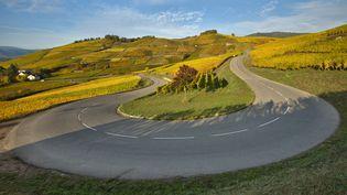Une route à proximité de Turckheim (Haut-Rhin). (JEAN ISENMANN / ONLY FRANCE / AFP)