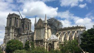 Le chantier de rénovation de la cathédrâle Notre Dame de Paris a été brutalement interrompu en raison de l'épidémie du coronavirus. (NOÉMIE BONNIN / FRANCE-INFO)