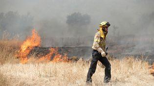 Un sapeur-pompier lutte contre un incendie en Catalogne, le 27 juin 2019. (PAU BARRENA / AFP)