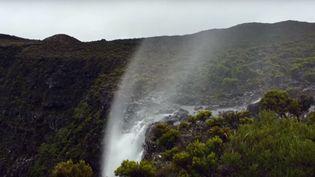 La cascade de la Ravine Creuse, sur l'île de la Réunion. (JONATHAN PAYET / YOUTUBE)