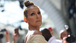 La chanteuse Céline Dion à Paris en juillet 2019. (LUCAS BARIOULET / AFP)