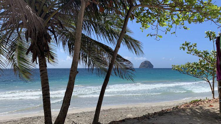Une plage de Martinique en février 2019. (LP/AURELIE AUDUREAU / MAXPPP)