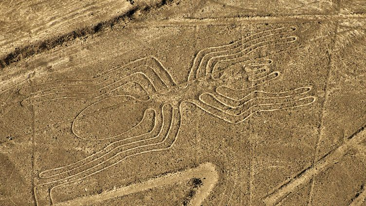 Un géoglyphe du désert de Nazca (Pérou) censé representer une araignée, le 12 décembre 2014. (MARTIN BERNETTI / AFP)