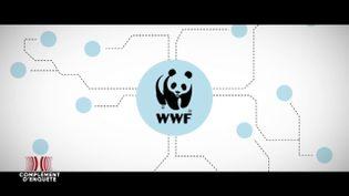 Complément d'enquête. WWF : les producteurs d'huile de palme labellisésRSPOont-ils cessé de ravager la forêt primaire ? (COMPLÉMENT D'ENQUÊTE/FRANCE 2)