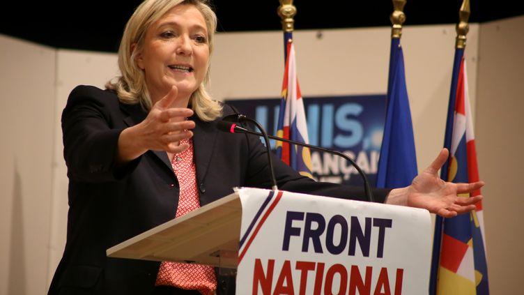 La présidente du Front national Marine Le Pen, lors d'un meeting à Branges (Saône-et-Loire) pour soutenir les candidats aux élections départementales, dimanche 15 février 2015. (CITIZENSIDE / ETIENNE GATHERON / AFP)