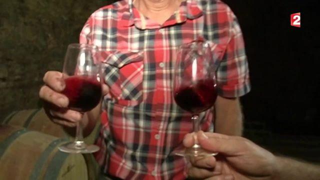 Le vin, un atout économique pour la France