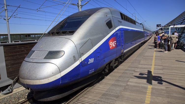 Un TGV à Avignon, le 27 juin 2011. (COLIN MATTHIEU / AFP)
