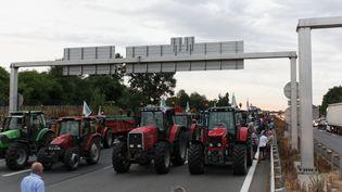 Des éleveurs protestent sur l'autoroute A6 à Lyon (Rhône) le 22 juillet 2015. (RICHARD ORTIZ / CITIZENSIDE.COM / AFP)