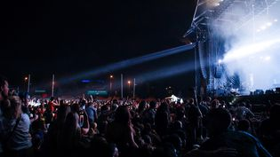 Le festival Rock en Seine en 2019. (- / AFP)