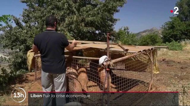 Liban : un exode économique