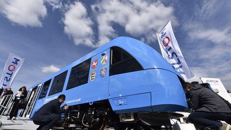"""Le nouveau train """"Zéro émissions""""d'Alstom baptiséCoradia iLint,présenté lundi 20 septembre à Berlin (Allemagne). (JOHN MACDOUGALL / AFP)"""