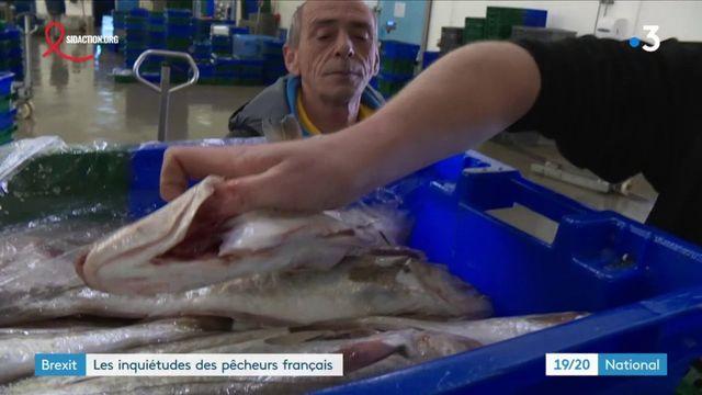 Brexit : les pêcheurs bretons craignent une sortie sans accord