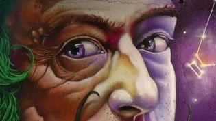 """""""Peinture Fraîche"""" : un nouveau festival dédié au street art à Lyon (M. Boudet / France Télévisions)"""
