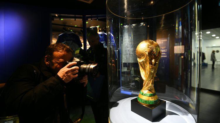 Le trophée de la Coupe du monde (FRANCK FIFE / AFP)