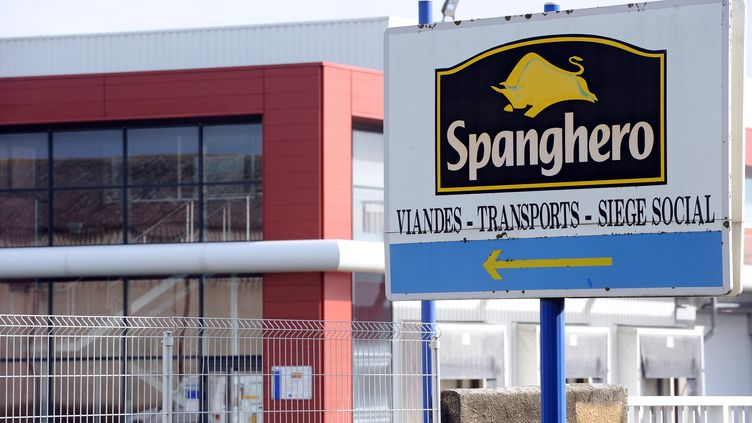 L'entreprise Spanghero, située à Castelnaudary (Aude), est accusée d'avoir fait passer de la viande de cheval pour de la viande de bœuf. (REMY GABALDA / AFP)
