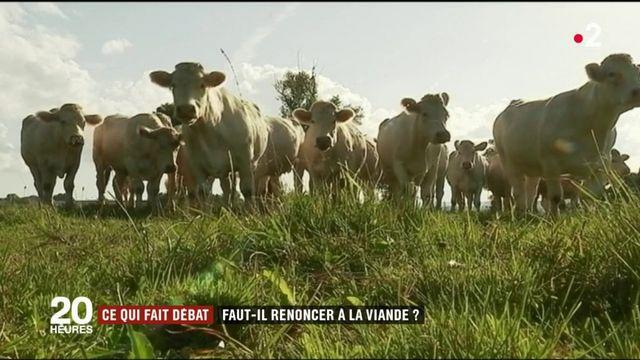 Alimentation : faut-il renoncer à la viande ?