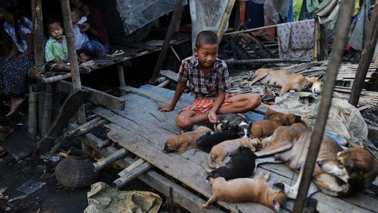 Dans un bidonville de la banlieue de Rangoon, en Birmanie. (AFP/Christophe Archambault)