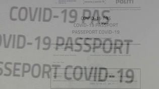 Covid-19 : l'idée d'un passeport vaccinal fait débat (France 2)