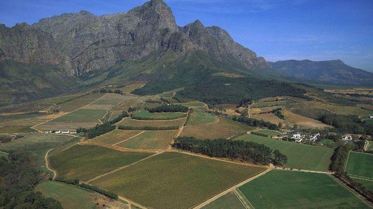 Plantations de vignobles dans la vallée de Franshoek en Afrique du Sud (Photo AFP Richard Du Toit)