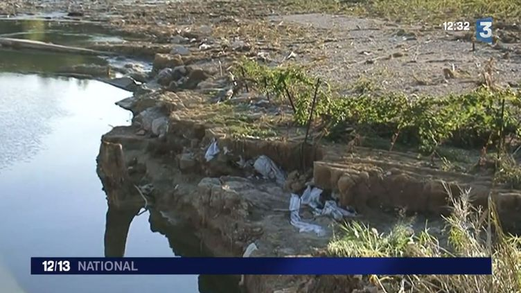 Une exploitation viticole dévastée par les inondations, à Saint-Pargoire dans l'Hérault. (CAPTURE D'ÉCRAN FRANCE 3)