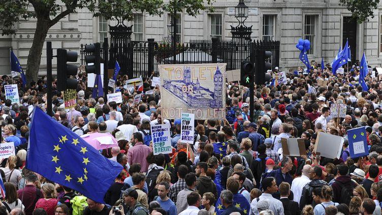 Des milliers de manifestants se sont rassemblés devant Dowing Street (Londres), le 28 août 2019, pour protester contre la décision de Boris Johnson. (DANIEL SORABJI / AFP)