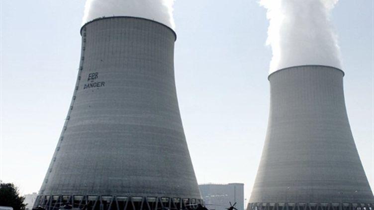Vue des tours de refroidissement du site de la centrale nucléaire de Belleville-sur-Loire (2007). (AFP - Alain Jocard)