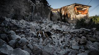 Une maison effondrée après le séisme au Teil (Ardèche), le 12 novembre 2019. (JEFF PACHOUD / AFP)