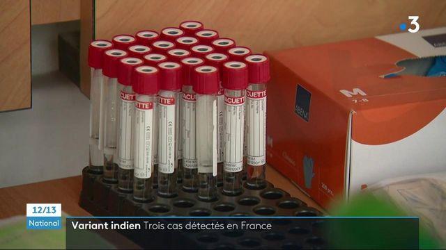 Covid-19 : trois cas de variant indien détectés en France
