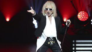 Michel Polnareff lors d'un concert à Nice (Alpes-Maritimes), le 8 novembre 2016. (VALERY HACHE / AFP)