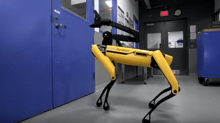Le robot-chien de Boston Dynamics va ouvrir la porte. (CAPTURE D'ÉCRAN YOUTUBE)