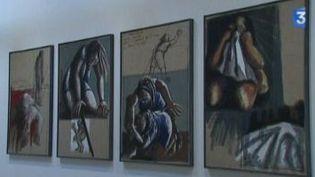 Musée Paul Dini : le choix d'un collectionneur  (Culturebox)
