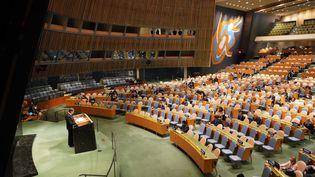 Les membres des Nations unies siègent à New York (Etats-Unis) le 20 février 2020. (BRIAN SMITH / SPUTNIK / AFP)
