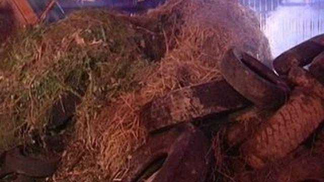 Crise des agriculteurs : action coup de poing à la préfecture de Saint-Lô