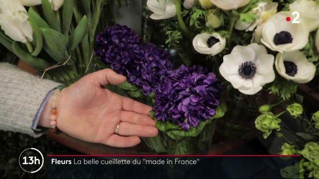 Fleurs : une cueillette made in France face à la concurrence étrangère