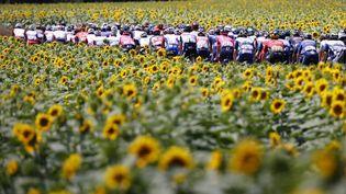 Le peloton du Tour lors de la 14e étape entre Carcassone et Quillan, le 10 juillet 2021. (THOMAS SAMSON / AFP)