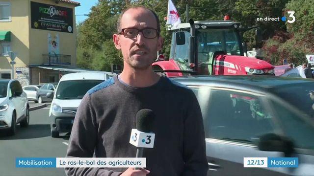 Mobilisation : les agriculteurs expriment leur colère dans toute la France