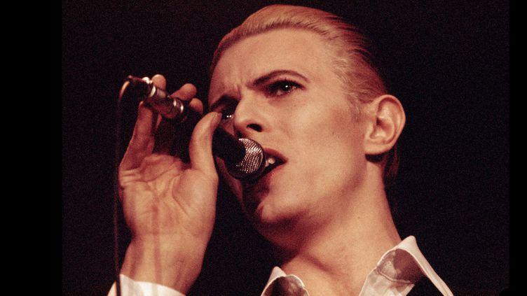 """David Bowie à Copenhague sur le """"Station to Station"""" World Tour en 1976, l'année de la sortie de """"L'homme qui venait d'ailleurs"""".  (Jorgen Angel / Getty Images)"""