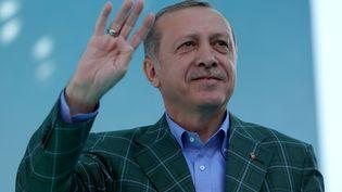 Le président turc,Recep Tayyip Erdogan, lors d'un meeting à Istanbul, le 15 avril 2017. (BERK OZKAN / AFP)