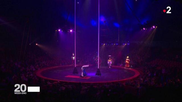 Cirques : la piste aux écoliers