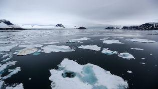 Près de l'archipel François-Joseph (Russie), dans l'océanArctique, le 19 août 2019. (PAVEL LVOV / SPUTNIK / AFP)