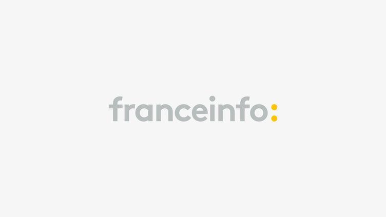 Franceinfo (Franceinfo)