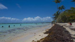 La plage de Bois Jolan, à Sainte-Anne, en Guadeloupe, le 23 avril 2018. (HELENE VALENZUELA / AFP)