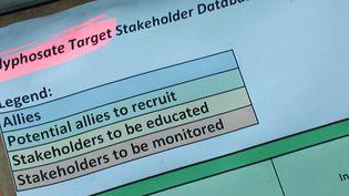 """Un fichier appelé """"Glyphosate target"""" liste 74 cibles prioritaires divisées en quatre groupes en fonction de leur soutien à Monsanto. (capture d'écran) (L'OEIL DU 20 HEURES / FRANCE 2)"""