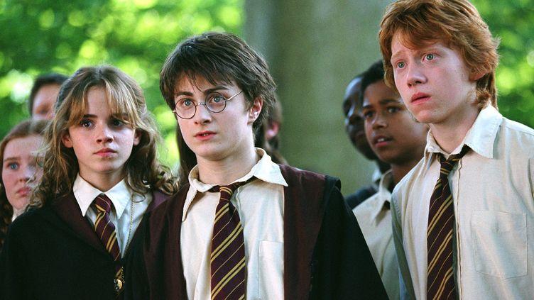 Rupert GrintetEmma Watson entourentDaniel Radcliffe, l'acteur qui joue Harry Potter dans les huit films adaptés des livres de J.K. Rowling. (EYEPRESS / AFP )