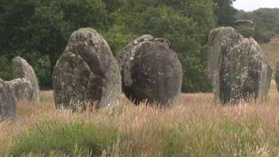 Morbihan : après le confinement, les herbes folles ont poussé entre les menhirs de Carnac (CAPTURE D'ÉCRAN FRANCE 3)