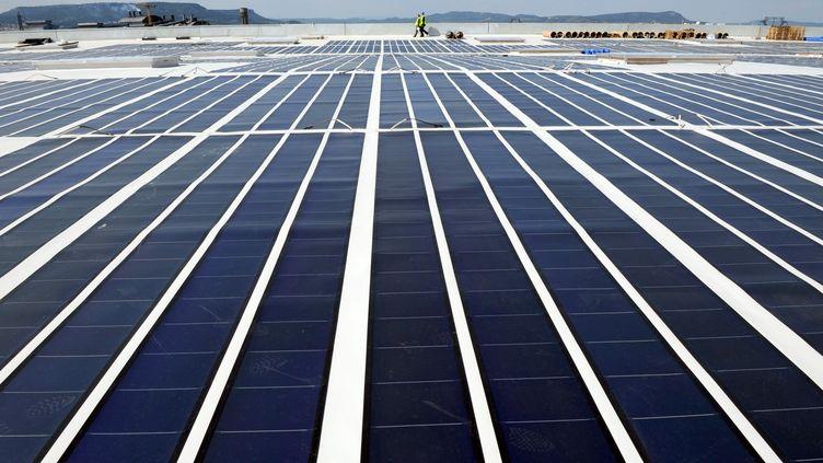 Des panneaux photovoltaïques installés à Laudun, dans le Gard en 2008. (Image d'illustration) (PASCAL GUYOT / AFP)