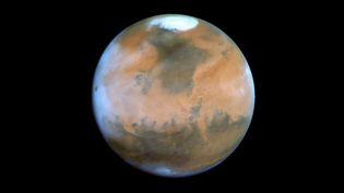 La planète Mars photographiée par le téléscope Hubble en 2005. (MAXPPP)